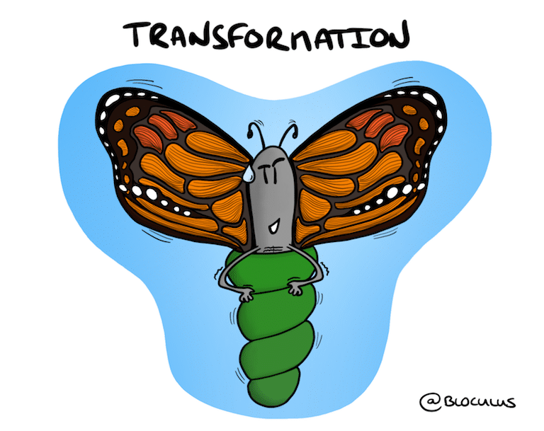 #Coaching : Chemin d'une Transformation