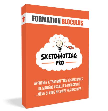 Formez-vous à la #FacilitationGraphique avec Bloculus