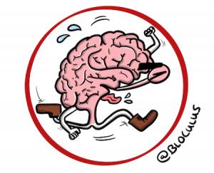 Cohérence Cardiaque : Comment aider notre cerveau à sortir d'un épisode de stress intense-cerveau